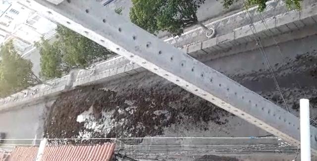 """""""Fezes de porco"""" estão causando dor de cabeça em Serra Talhada"""